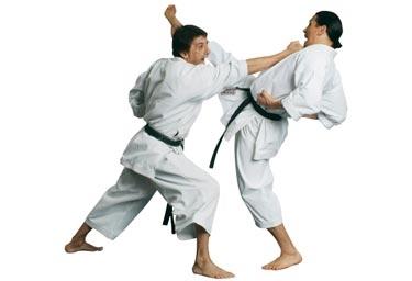 Karateca do Vasto Verde é Campeão Brasileiro